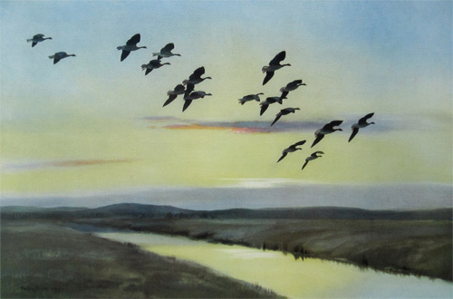 Morning Flight Over the Marsh by Peter Scott