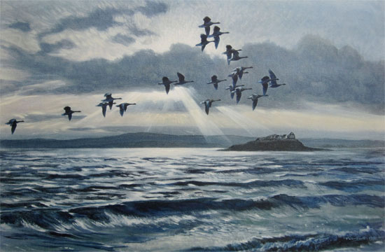 Sir Peter Scott: Greylags at Chapel Island with a Flood Tide
