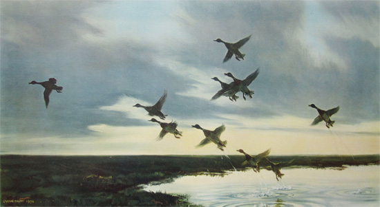 Sir Peter Scott: Mallards Going to Sea - A Tidal Pool on the Salting