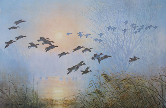 Sir Peter Scott: Teal Coming to the Pool, by the Willow, on a Misty Morning