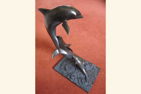 David Backhouse: Dolphin Group